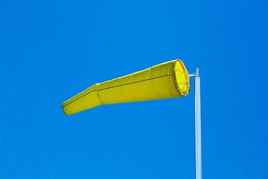 Sock It To Me Baby - Windsock, Palm Beach - Sydney - Australia by Bryan Freeman