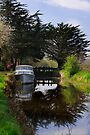 Ballyellin Lower lock, The Barrow Navigation, County Carlow, Ireland by Andrew Jones