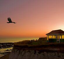 Early Flight by Geoff Carpenter