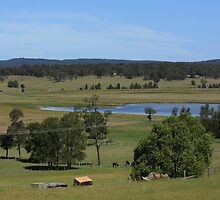 Hunter Valley Farmlands by reflector
