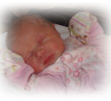 Introducing the latest member of our family........... by Sherry Seely