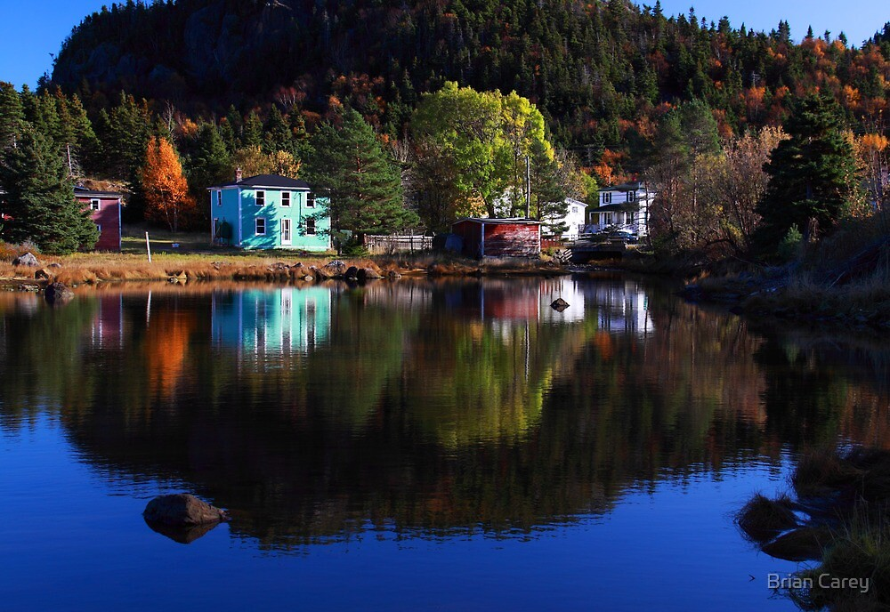 Reticent Colour by Brian Carey