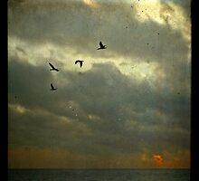 Dark sunrise by Barbara  Corvino