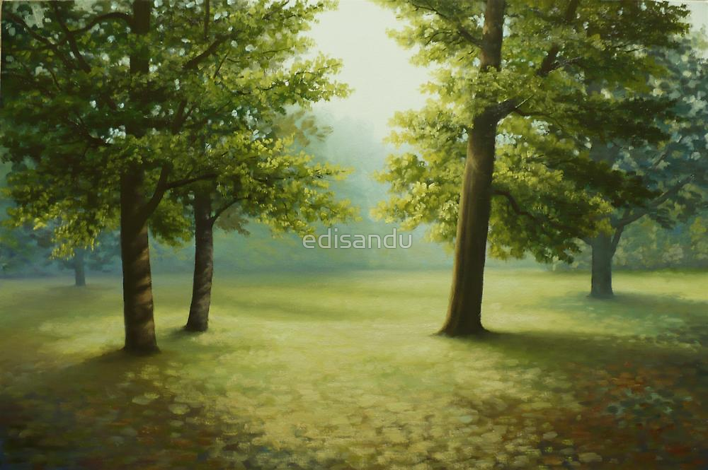 summer morning by edisandu