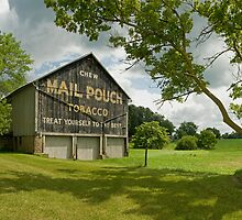 Mail Pouch Barn - Dalton, Ohio by Bob  Perkoski