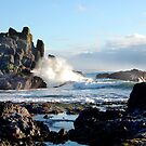 Ocean Wave by Bob Hortman