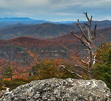 Linville Gorge by David Allen