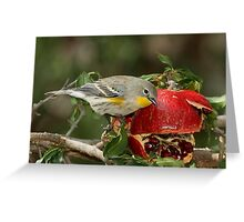 Yellow-rumped Warbler and pomegranate Greeting Card