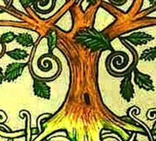 Celtic Tree of Life Sticker