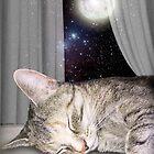 Moon Cat by aura2000
