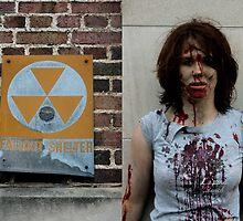Fallout Shelter by Lita Medinger