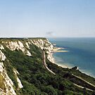 There`ll be Bluebirds over the White Cliffs of Dover by Brunoboy