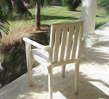 Palm shadows by Susana Weber