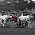 THE WINNING BOUT by RakeshSyal
