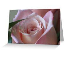 Soft Petals Greeting Card