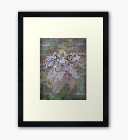 Layer upon Layer my Petals will be Revealed - JUSTART © Framed Print