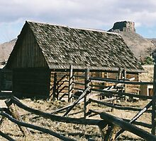 Home on the Range by David Shaw