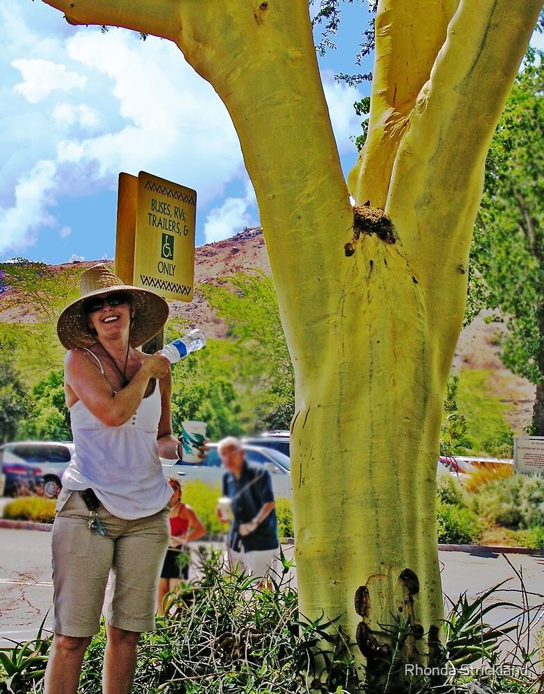 The Crotch Tree (?) by Rhonda Strickland