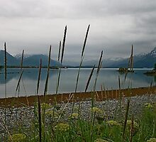 Prince William Sound2 by Vickie Emms