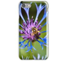 The bee and the Cornflower iPhone Case/Skin
