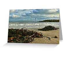 November Day ~ Lyme Regis Greeting Card