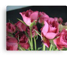 Macro Rose Canvas Print
