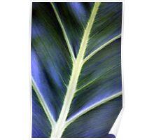 Blue Green Leaf Poster