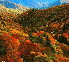 VALLEY,AUTUMN by Chuck Wickham