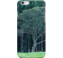 The Far Side of the Hill iPhone Case/Skin