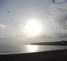 Seaton and Birds by Claire Elford