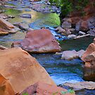 Zion National Park, Utah by Irvin Le Blanc