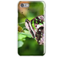 Tailed jay iPhone Case/Skin