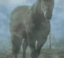 Fulgar in The Mist by KatsEye