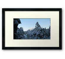 Snowshoeing Framed Print
