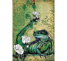 Green Iguana- Mixed Media Photographic Print