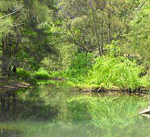 Tranquil Stream by Richard  Willett