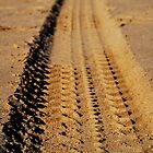 Making Tracks by Richard Owen