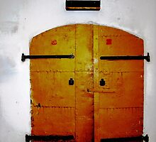 old yellow doors by Rada