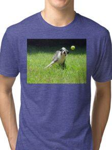 Catch #39 Tri-blend T-Shirt