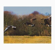 Geese in flight One Piece - Short Sleeve