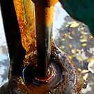 Pump - Rust and Water by Trenton Purdy