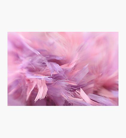 Flow of softness Photographic Print