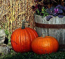Pumpkin Still Life by Brian104