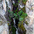 Maligne Canyon(1) by Jann Ashworth