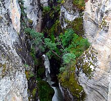 Maligne Canyon(1) by Jann Ashworth