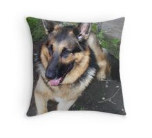 Handsome Devil - Bruzer Throw Pillow