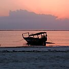 Morning Cycle - Zanzibar, East Africa by timstathers