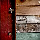 Door by Donna Rondeau