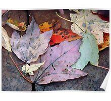 Autumn Moods 12 Poster