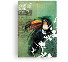 Toucan- Antique Plate- Mixed Media Canvas Print